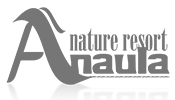 Anaula Grey